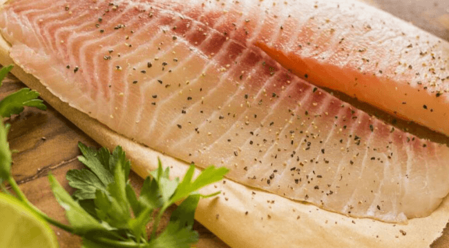 khasiat ikan talapia