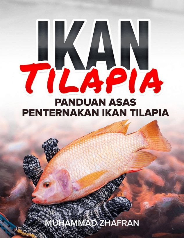 Panduan Ternak Ikan Talapia